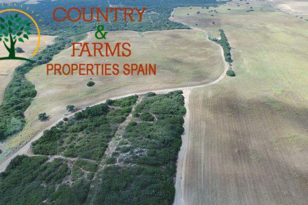 Comprar fincas en Andalucía, Extremadura y Portugal - Country & Farms